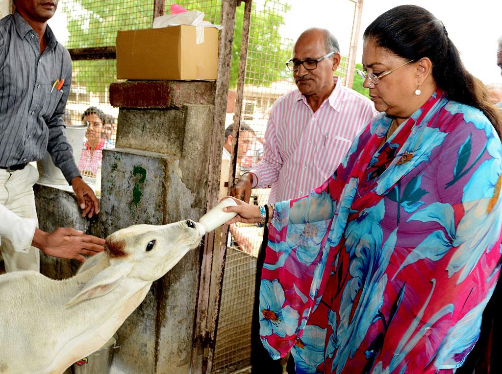 Vasundhara Raje - Chief Minister