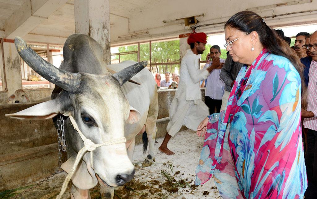CM Vasundhara Raje - Sirohi