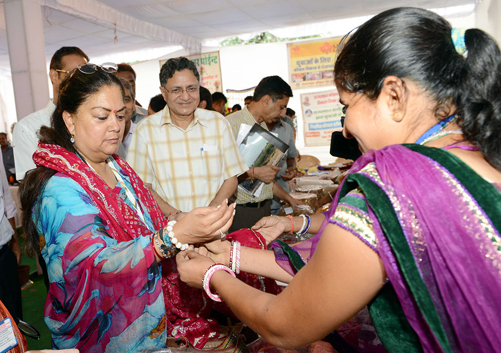 CM Vasundhara Raje, Rajasthan Government