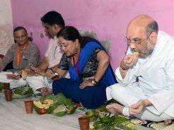 vasundhara-raje-amit-shah-lunch-CMA_7651