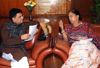 vasundhara-raje-meets-railway-minister-piyush-goyal-DSC_4956