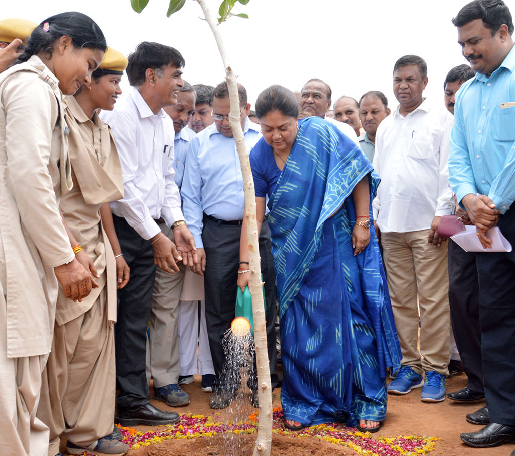 Van Mahotsav inauguration by Vasundhara Raje