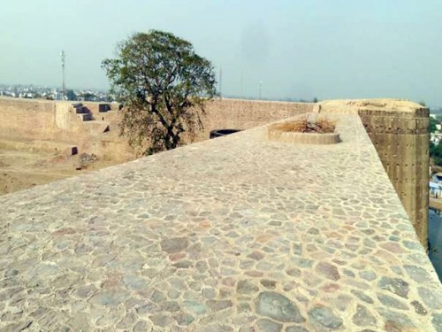deeg fort wip picture6