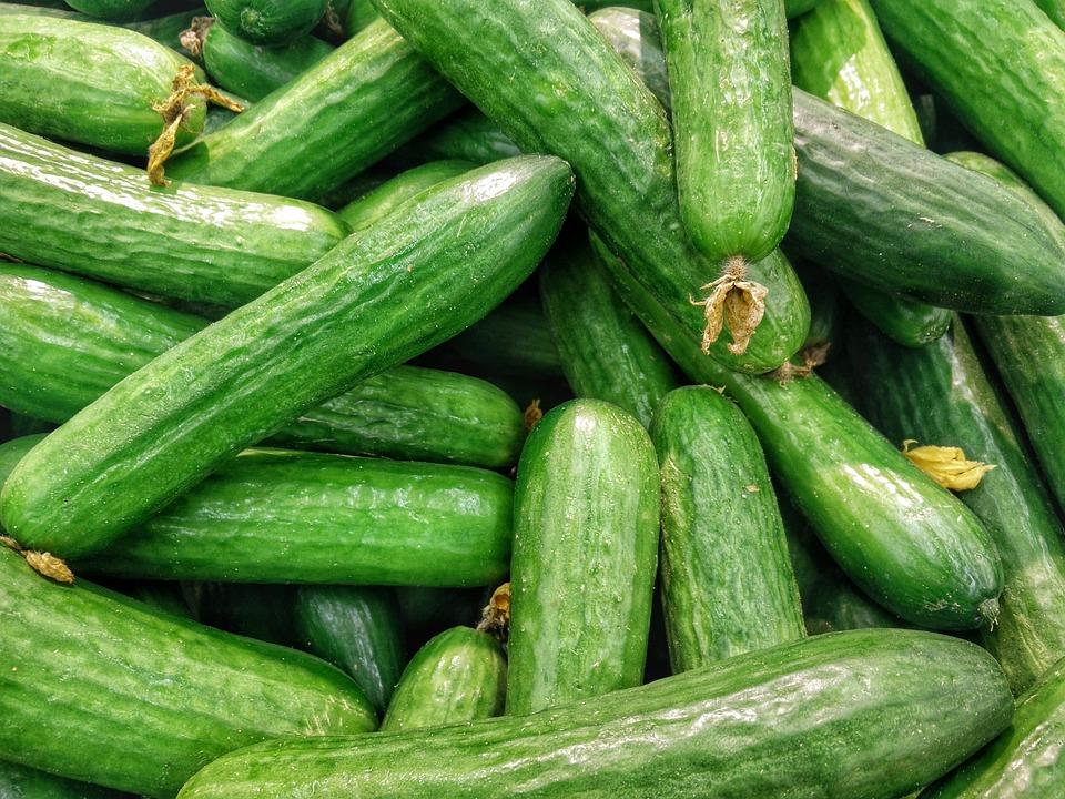 cucumbers 1081700_960_720